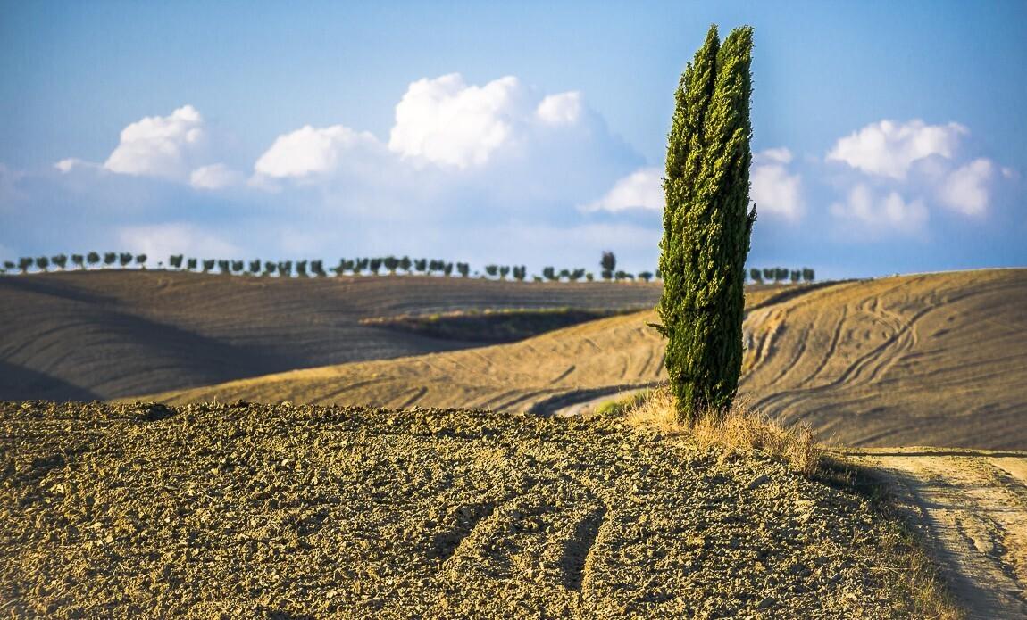 voyage photo toscane automne bruno mathon galerie 1