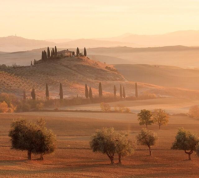voyage photo toscane automne vincent frances promo general 1 jpg