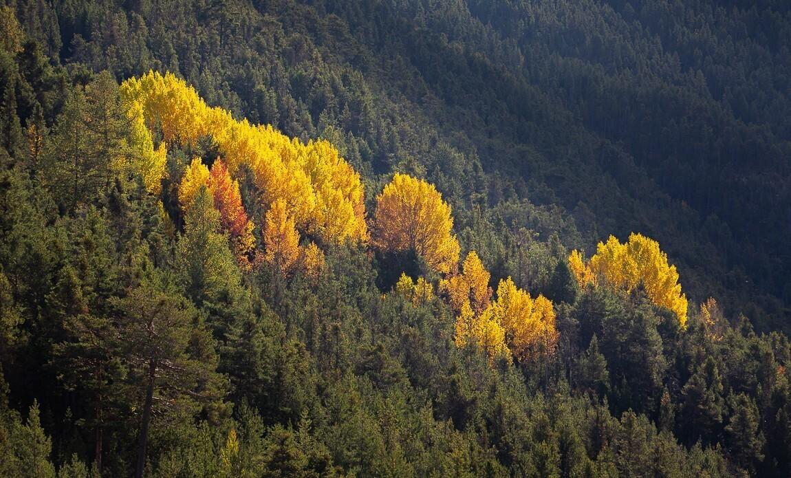 voyage photo vallee de la claree lionel montico galerie 20