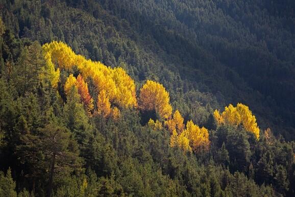 voyage photo vallee de la claree lionel montico promo 8