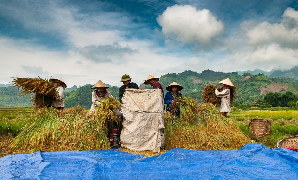 voyage photo vietnam eric montarges galerie 14