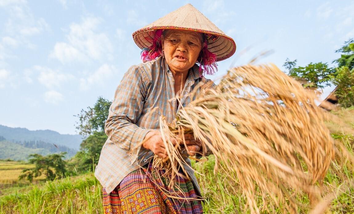 voyage photo vietnam eric montarges galerie 9